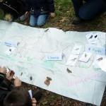 Tapis des habitats et des oiseaux du bois du ru de Pouilly