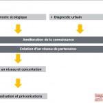 diapos présentation ndtv - réseau et recherche > méthode