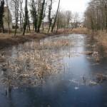 Février 2013, le marais est en eau.