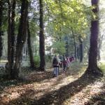 Premiers pas dans le futur Espace Naturel Partagé du ru de Pouilly