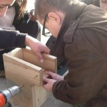 Construction des nichoirs