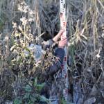 Equipe marais-Mesure de la courbe topographique du marais