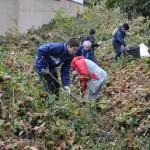 bénévoles au travail