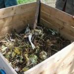 Apport de matière fraîche au compost